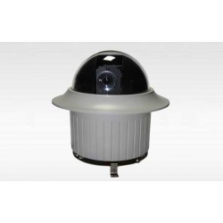 "D89 INDOOR / 1/4"" SONY CCD"
